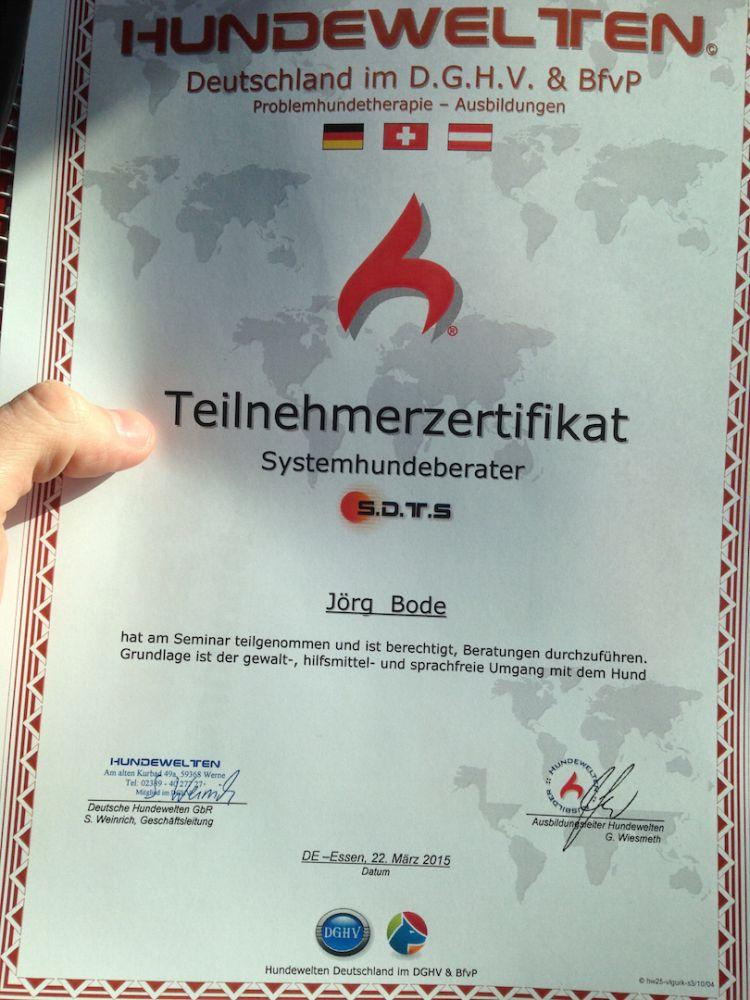 SDTS Zertifizierter Systemhundberater